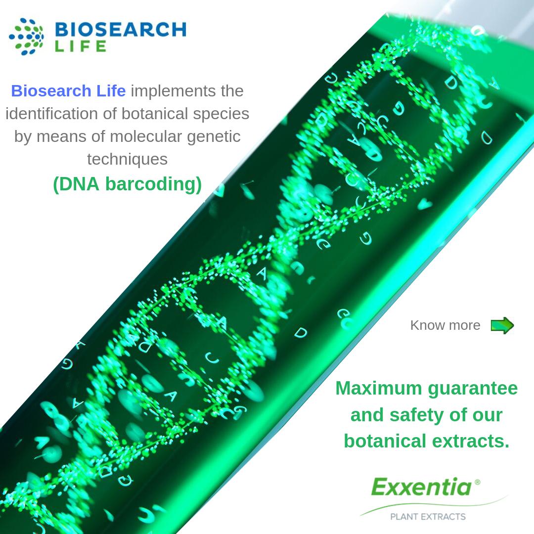 Exxentia DNA botanical extracts