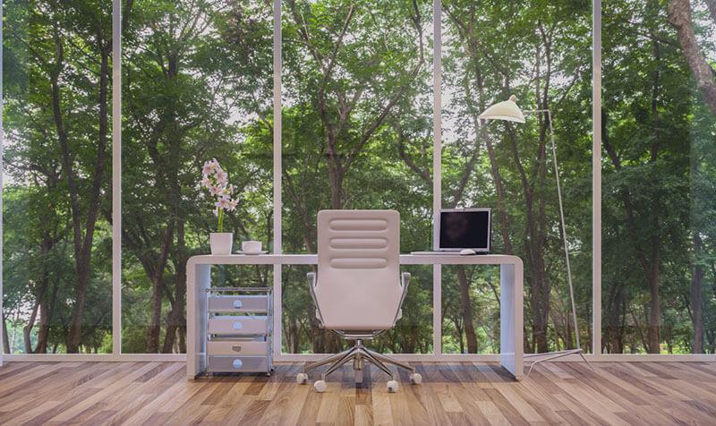 escritorio con vistas al bosque